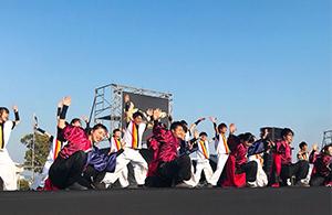 Dance performance  in Kagoshima Spring Festival Dai-hanya